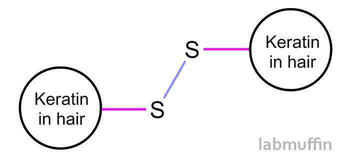 keratindisulfide