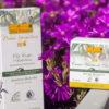 Toskana Naturkosmetik » natives Olivenöl exquisit in der pflegenden Kosmetik eingesetzt