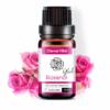 Ätherisches Rosenöl kaufen für Körper und Seele » achten Sie auf Qualität!
