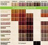 Sante Pflanzen-Haarfarbe Pulver